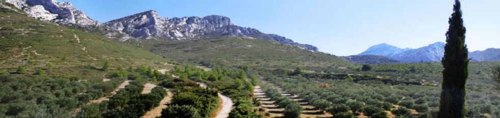 Road trip moto guidé Corse Provence